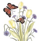 The Tulip and the Butterfly by Constance Widen