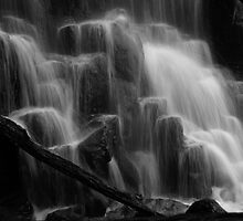 Forces of nature... by michellerena