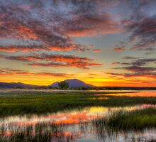 Yada, Yada, Sunset by Bob Larson