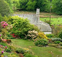 The Garden Behind The Cottage Behind The Farm by Jamie  Green