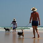 Walk The Dog - Sunshine Coast - Queensland - Australia by AMP  Al Melville Photography