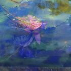 Waterlily Collage  by Virginia McGowan