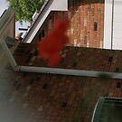 strange red blob! by rue2