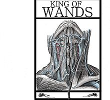 King of Wands by Peter Simpson