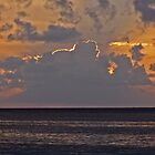 Dusk off MoBay by David J Dionne