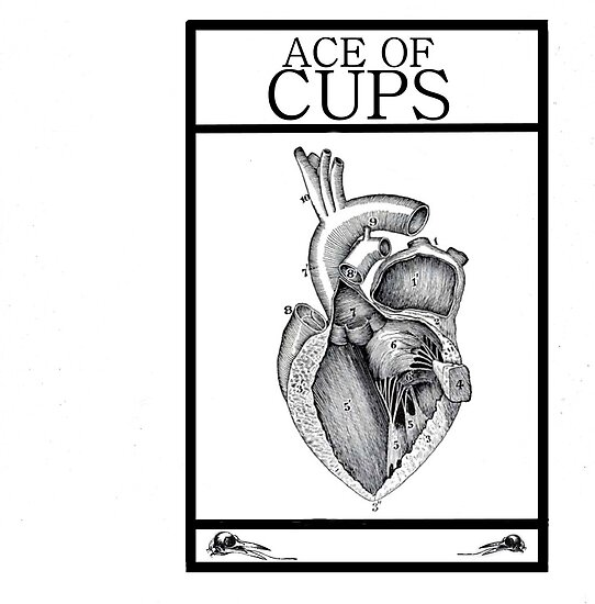 Ace of Cups by Peter Simpson