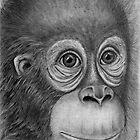 """Sad""- Baby orangutan. by Lorraine  Stern"