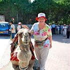 Nice Camel...No Biting Please!! by Carol Clifford