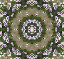 Mauve and White Lantana Kaleidoscope Art 1 by Christopher Johnson