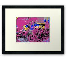 Daffodils Dream Framed Print