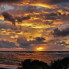 Golden Sunrise (Kauai)  by Clyde  Smith