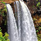 Wailua Falls by Clyde  Smith
