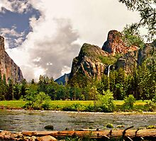 Yosemite Valley by Clyde  Smith
