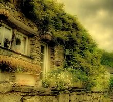 The Cottage Of My Dreams by VoluntaryRanger