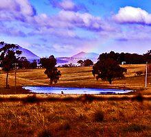 Megalong Valley Dam  in NSW Australia by Virginia Daniels