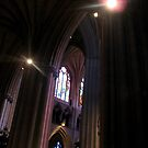 Halos in the Cathedral by Marmadas
