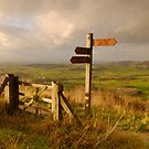 Cleveland Way, Sutton Bank, North Yorkshire Moors by James Paul