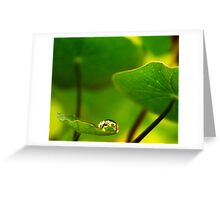 Feeling small in a Big World Greeting Card