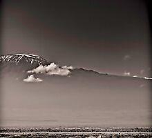 Walking by Kili - Amboseli National Park - Kenya by Scott Ward