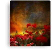 Phil's Poppies Canvas Print