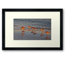 Pensacola Beach during Happier times.... Framed Print