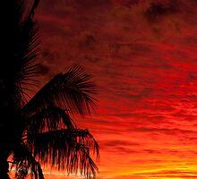 Noosa,Queensland,Australia by Rosina  Lamberti