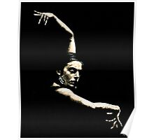 Flamenco Arms Poster