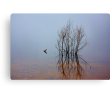 """""""Solitary"""" Canvas Print"""
