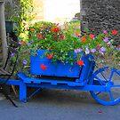 The blue wheelbarrow by Alan Gillam
