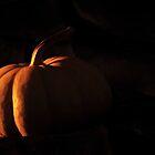 Pumpkin by BluAlien