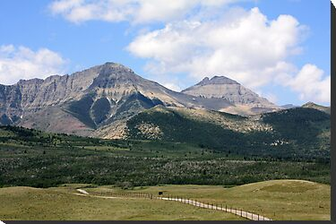 Rockies Ranchland by Alyce Taylor