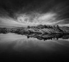 Sliver by Bob Larson