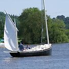 Messing about in boats by Alan Gillam