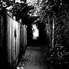 Pathway B+W by GraceEloise
