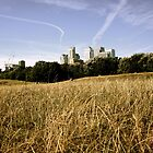 Canary Wharf seen from Mudchute Farm by serepink