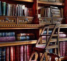 The Library by Sarah  Dawson