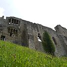 Ants Eye View of Barnard Castle by JenaHall