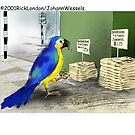 Bird Bathroom Fixtures by Londons Times Cartoons by Rick  London