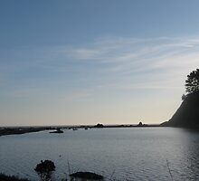 Mendocino Solitude by jdbussone