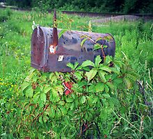 The Rusty Mailbox  by vvfineartphotog