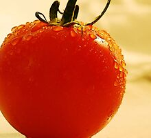 Garden Fresh Tomato by Tori Snow