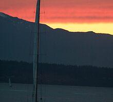Sailing, take me away.... by Laddie Halupa