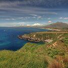 Connemara coastline view by John Quinn