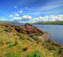 Connemara landscape by John Quinn