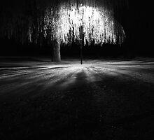 Lighted Tree by Johannes Bildstein