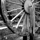 Water Wheel, Abant, Turkey by Maggie Woods
