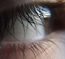 A closer look at the lash (super macro) by Bernie Stronner