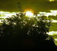 CO. MEATH RISING SUN by gracestout2007