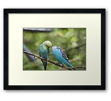 Caught them kissing again Framed Print