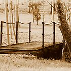 Little Foot Bridge 3 in Sepia by TeAnne
